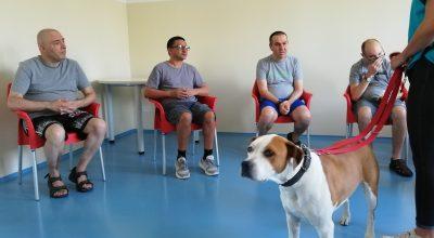 Attività assistite con il cane Tequila all'RSD Santa Caterina di Collesalvetti